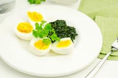 Ägg med spenat Royaltyfri Fotografi