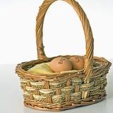 ägg som investerar fyrkanten Royaltyfria Foton