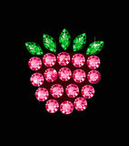 Ggem Raspberry Stock Images