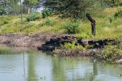 Ghat antico su zona umida India fotografia stock libera da diritti