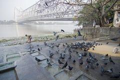 Ghat Mallik или ghat Kolkata, западная Бенгалия Jagannath, Индия Стоковые Изображения