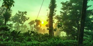 Ghats occidental photos libres de droits