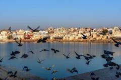 Ghats przy Pushkar jeziorem w Rajasthan indu zdjęcia stock