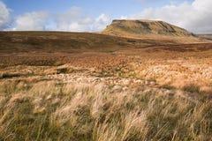 Ghent widzieć od Pennine sposobu cumuje ziemię w Yorkshire   zdjęcie stock