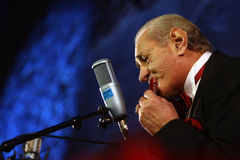 Gheorghe Zamfir Concert Royalty Free Stock Images