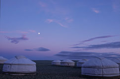 gher лагеря Стоковое Изображение RF