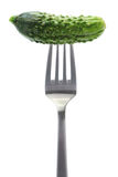 Gherkin, garden fresh cucumber on fork Stock Photo