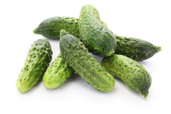 Gherkin, garden fresh cucumbers Stock Photo
