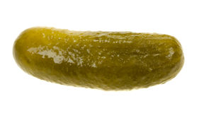 Gherkin isolated. Gherkin( dill pickle) isolated on a white background Stock Images