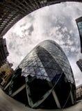 Gherkin in London (Swiss re) Royalty Free Stock Image