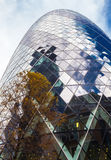 The Gherkin Reflections Royalty Free Stock Images