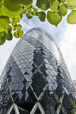 The Gherkin Royalty Free Stock Photo