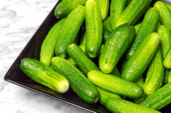 Gherkins on a black plate. On a marble table Royalty Free Stock Photography