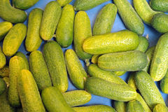 Gherkins. In a box at the market Royalty Free Stock Image