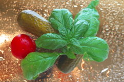 Gherkins pickled cherry tomatoes and fresh basil leaves Royalty Free Stock Photo