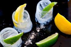 Ghiacci i vetri con le fette della limetta e del limone e sali il concetto del partito dell'assaggio di tequila Fotografia Stock Libera da Diritti