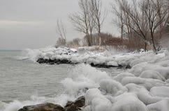 Ghiacci le rocce e gli alberi dello spruzzo lungo la riva del lago Fotografia Stock Libera da Diritti