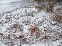Ghiacci sul lago un la mattina fredda dell'inverno immagini stock