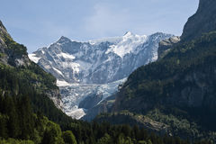 Ghiacciaio alpino (Grindelwald, Svizzera) immagini stock
