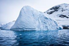 Ghiacciaio antartico Immagini Stock