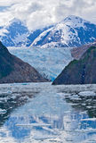 Ghiacciaio del Sawyer, Alaska Fotografie Stock