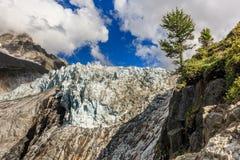 Ghiacciaio di Argentiere in Chamonix Alps, Francia Immagine Stock Libera da Diritti