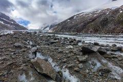 Ghiacciaio di Argentiere in Chamonix Alps, Francia Immagini Stock Libere da Diritti