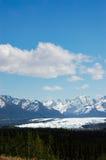 Ghiacciaio di Matanuska da Glenn Highway nell'Alaska Immagini Stock Libere da Diritti