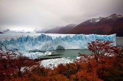 Ghiacciaio Perito Moreno Fotografia Stock