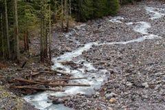 Ghiacciaio Rocky River Basin di Nisqually Fotografia Stock