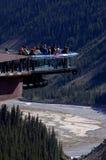 Ghiacciaio Skywalk della valle di Sunwapta Immagine Stock
