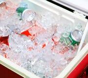Ghiaccio & bevanda Fotografia Stock Libera da Diritti