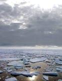 Ghiaccio che galleggia nel mare artico Immagine Stock