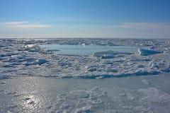 Ghiaccio del mare Glaciale Artico fuori dalla costa di Chukotka. Fotografia Stock Libera da Diritti