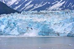 Ghiaccio dell'Alaska Fotografia Stock Libera da Diritti