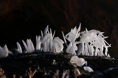 Ghiaccio e mondo della neve fotografie stock