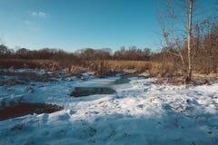 Ghiaccio e neve di fusione sul fiume in Forest Wetland Fotografie Stock Libere da Diritti