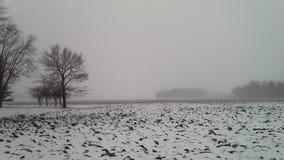 Ghiaccio e neve, fuori di Kemp Road a Lima, l'Ohio Fotografia Stock