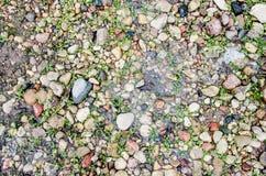 Ghiaccio e pietra: una cascata congelata sulle rocce Il ghiaccio da scorrere Ghiacci sulla pavimentazione del marciapiede dopo le immagini stock