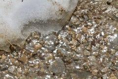 Ghiaccio ed acqua di fusione Immagini Stock