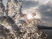 Ghiaccio freddo brillante, ghiaccioli luminosi sulla riva congelata del lago Raggi caldi del sole del tramonto riflessione Fotografie Stock