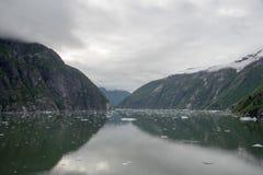 Ghiaccio glaciale in Tracy Arm Fjord, Alaska Fotografie Stock Libere da Diritti