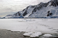 Ghiaccio marino antartico Fotografie Stock Libere da Diritti