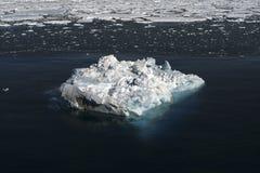 Ghiaccio marino sull'Antartide Fotografia Stock Libera da Diritti