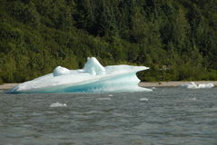 Ghiaccio partorito dal ghiacciaio di Mendenhall, Juneau, Alaska Immagini Stock