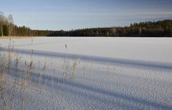 Ghiaccio sottile su un lago con neve brillante Fotografie Stock Libere da Diritti