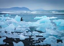 Ghiaccio sulla costa con un fotografo fotografie stock
