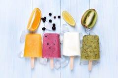 Ghiaccioli congelati casalinghi del gelato Fotografia Stock Libera da Diritti