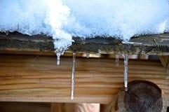 Ghiaccioli di inverno Fotografie Stock Libere da Diritti