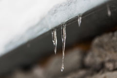 Ghiaccioli e neve che pendono dal tetto della costruzione Immagine Stock